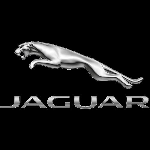 Videoer Jaguar